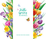 Template for card from arrangement with multicolor tulips flowers