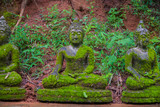 Statue of Buddha, Moss, next to the statue of Buddha