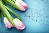 Bouquet of pink tulips on blue wooden table - 248686108