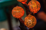 Beautiful handmade lantern lamp made from Strychnos nux-blanda A.W. Hill, fruits. Product of Thailand. - 248721774