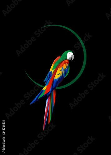 2d8d6159f parrot logo idea design, beautiful scarlet macaw bird in natural color,  vector illustration isolated