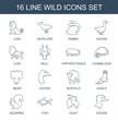 16 wild icons