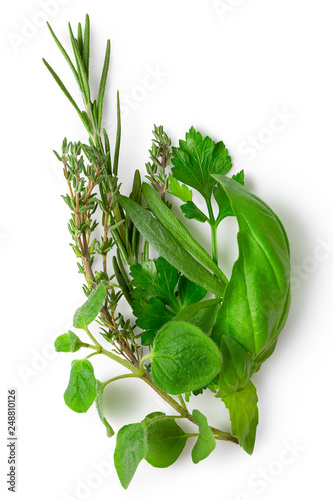Bundle of freshly picked provence herbs isolated on white from above.