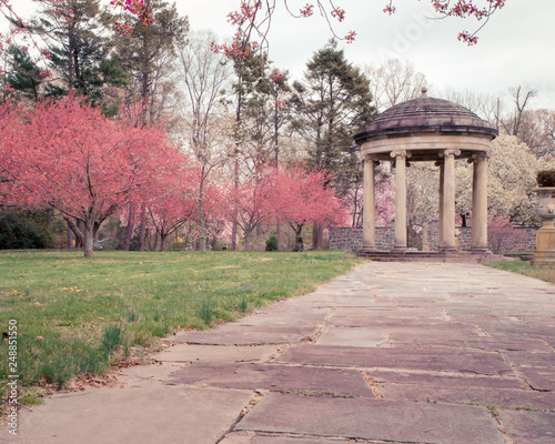 Foto Murales Beautiful spring garden scene with colorful blooming cherry trees and classical stone gazebo