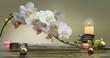canvas print picture - Wandbild mit Orchideen, Steinen im Wasser und schwimmenden Kerzen