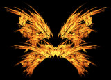 Fire Embers Butterfly Wings Abstract