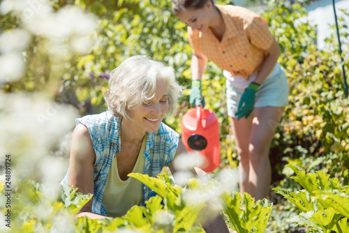 Senior and young woman gardening together © Kzenon