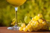 Verre de vin blanc en Anjou - 248916357