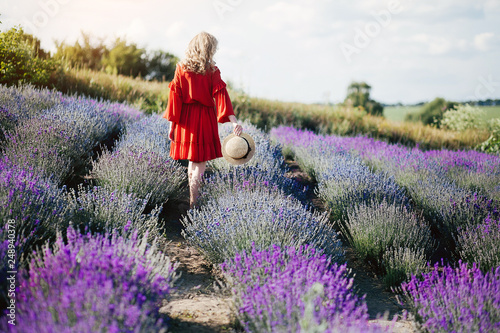 Beautiful girl in lavender - 248940378