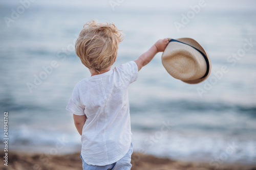 Foto Murales A rear view of small toddler boy with hat standing on beach on summer holiday.