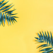 Summer composition. Tropical palm leaf on yellow background. Summer concept. Flat lay, top view, copy space, square