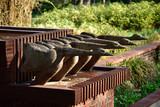 Fototapeta Rocks - Szczecin - fountain Bird's well from 1932 in the rose garden. © konik60