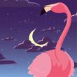 flamingo bird in the night