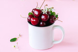 Fresh ripe cherries in a white bowl on a pink background.