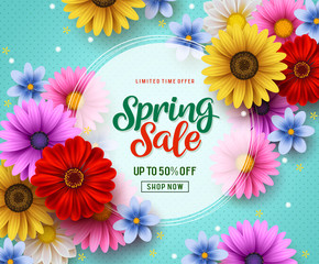 Spring sale vector banner template with colorful flowers elements like chrysanthemum and daisy in the background and spring season discount promotional text in white frame.