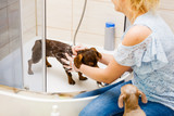 Woman showering her dog