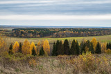 view of the sloping field and forest on a cloudy autumn day - 249018389