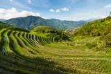 Longsheng rice terraces landscape in China