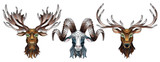 A set of stained glass items, stained glass with animal heads, a deer,  a elk and a RAM, isolates on white background - 249065513