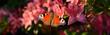 Leinwanddruck Bild - Blumen 989