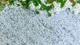 grauer Steinhintergrund mit Maiglöckchen