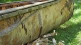 Native American birch bark canoe, with wood shavings.
