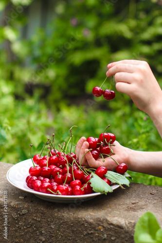 Foto Murales cherries, red and ripe crop. food background. top photo