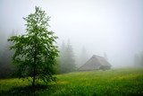 górska chata, mgła - 249194392