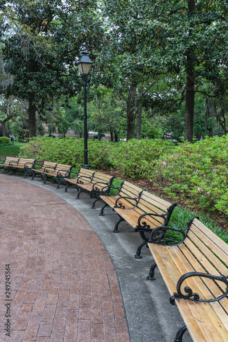 vertical view of benches in Forsyth Park in Savannah Georgia © Rosemarie