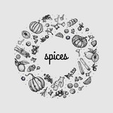 Vector circle with isolated hand drawn traditional spices and hot drinks ingredients, pumpkins and flowers on white background - 249252536