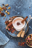 Spiced traditional Indian masala chai tea in cup with spices on rustic background - 249287913