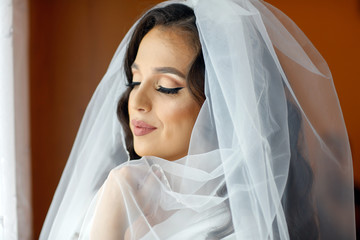 Beautiful Bride with Makeup and Bridal Hairstyle. Pretty Woman Bride, Face Closeup