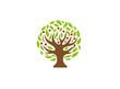 Creative Tree Logo - 249308703