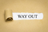 Way out - 249318522