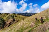 Hikers along the hillside hiking - 249347372