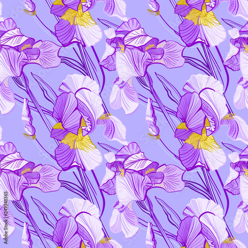 Floral pattern with iris flowers. Seamless vector pattern with colorful iris flowers. - 249348365