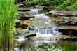 waterfallwa - 249354149