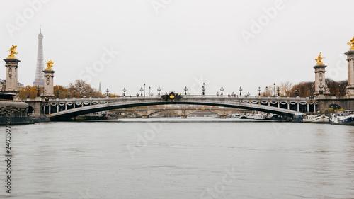 Paris (France) - Alexandre III Bridge on the Seine