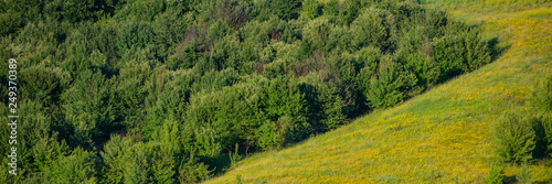 Deciduous forests and meadows in hilly areas. - 249370389
