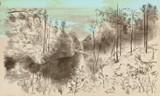 Landcape. An hand drawn illustration. Digital drawing. - 249374102