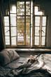 Leinwanddruck Bild - Daylight shining through an unmade bed