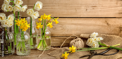 Leinwanddruck Bild narcissus flower