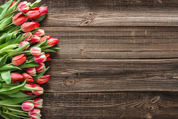 Colorful spring tulip. Mothers day flowers on wooden background.