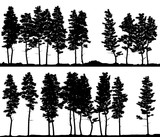 Horizontal banner silhouettes of pine coniferous forest on line. - 249525120
