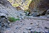 Wanderung durch den Barranco de Las Angustias - 249614363