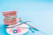 Dentist tools and orthodontic model on blue background.