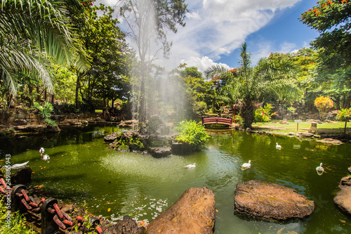 This traditional ande beautiful japanese garden is located in brazilian Caldas Novas City - 249865943
