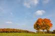 Leinwanddruck Bild - Herbst
