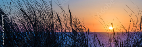 Sunset on atlantic ocean, beach grass silhouette in Lacanau France - 249877972