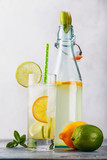 Tonic drink with lemon and lime in a transparent glass with an open bottle on the table